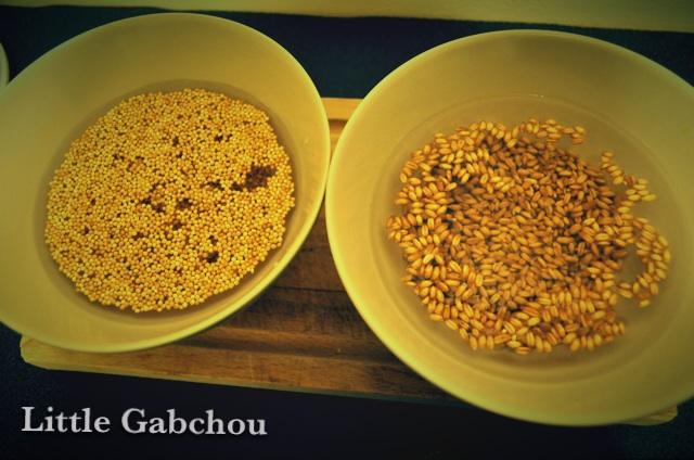 trempage de graine céréales faites maison pour bouillie bébé