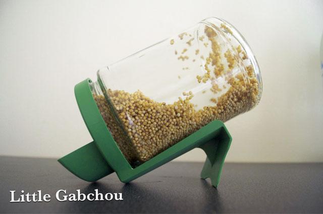 germoir céréales faites maison pour bouillie bébé