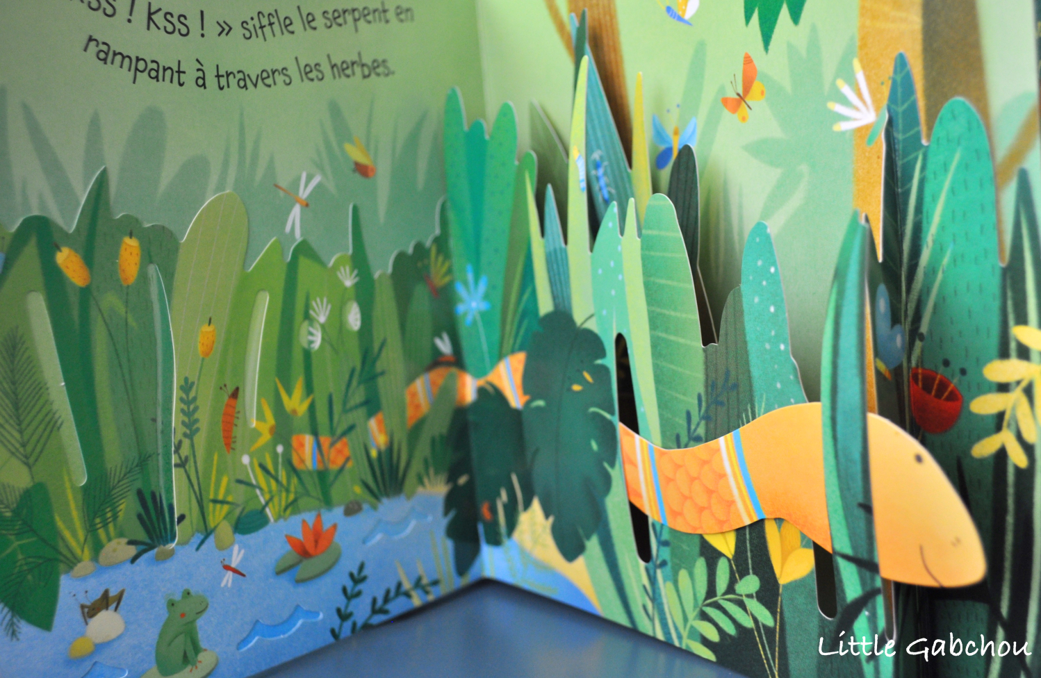 livre pop-up la jungle usborne