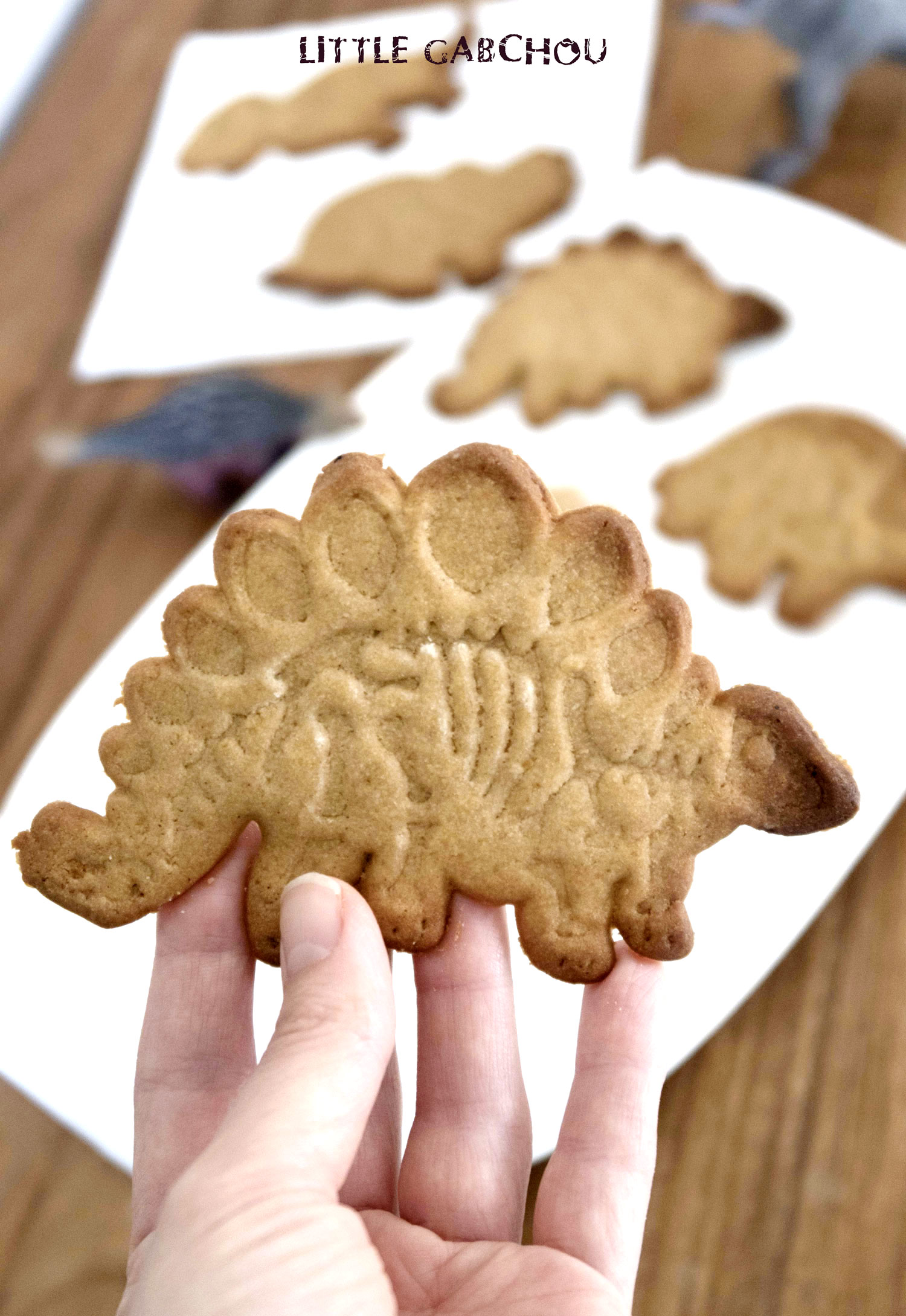 healthy sugar cookies dinosaurs for kids with coconut oil and brown sugar