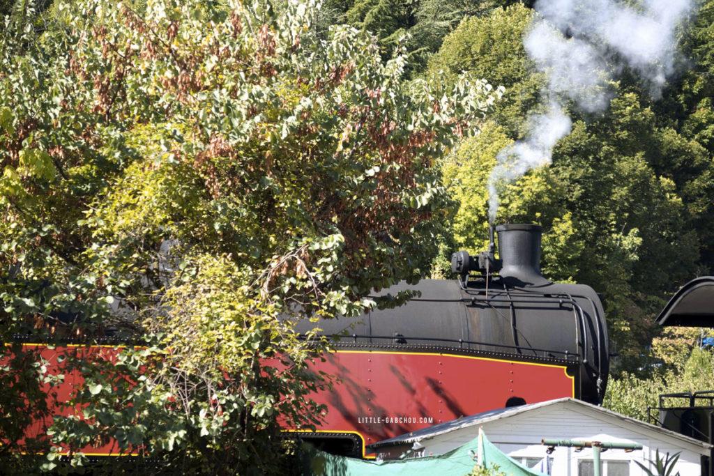 train à vapeur authentique dans les cévennes comme celui de Harry Potter