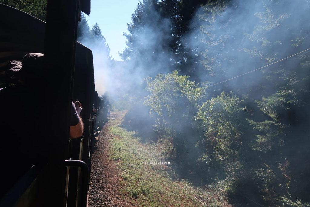 a bord du train à vapeur des cévennes
