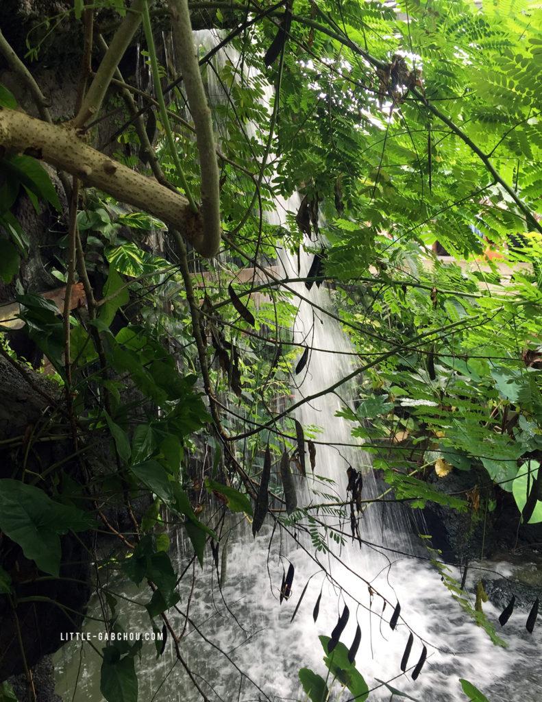 jardin exotique à la ferme aux crocodiles