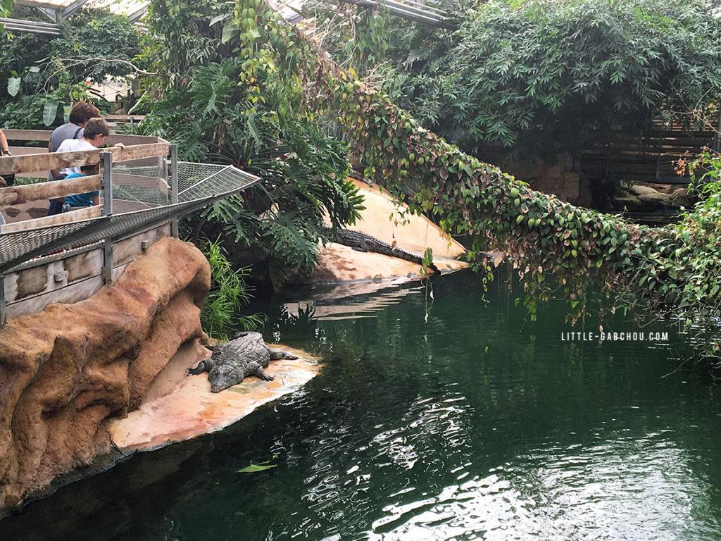 notre visite et avis de la ferme aux crocodiles