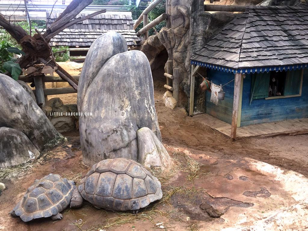 espace des tortues géantes ferme aux crocodiles