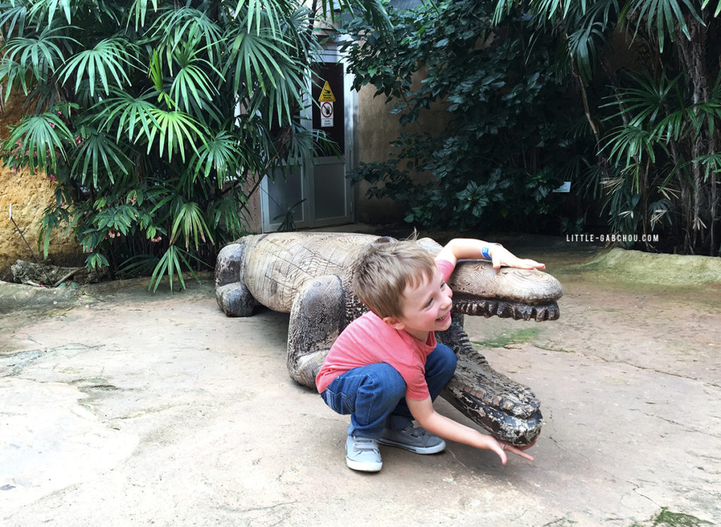 ferme aux crocodiles sortie avec des enfants