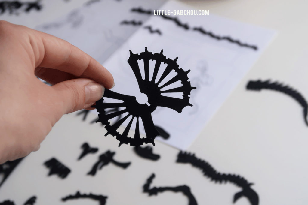 test et avis dinosaures en papier d'Agent Paper