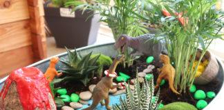 Jardin miniature fairy garden pour les enfants