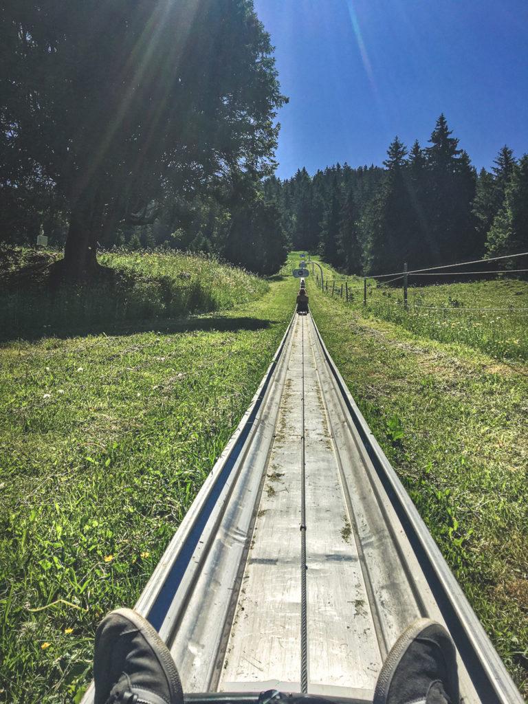 Activités à faire à Semnoz en famille luge d'été
