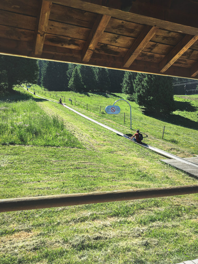 Activités à faire à Semnoz en famille glisse en luge d'été