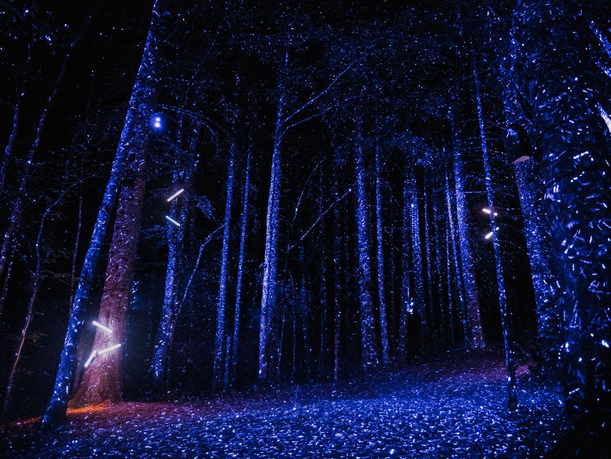 Spectacle Alta Lumina dans Les Gets