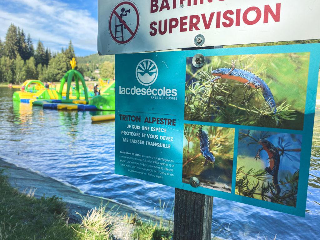 Le lac des écoles et le parc Wibit les Gets